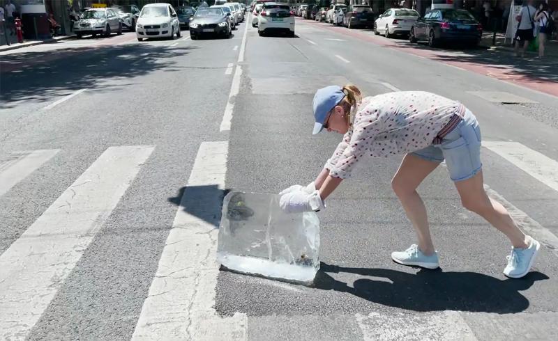 Mázsás jégtömböt tolt keresztül Budapesten Kováts Adél
